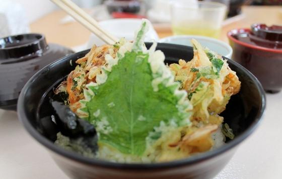 bolnicka hrana japan