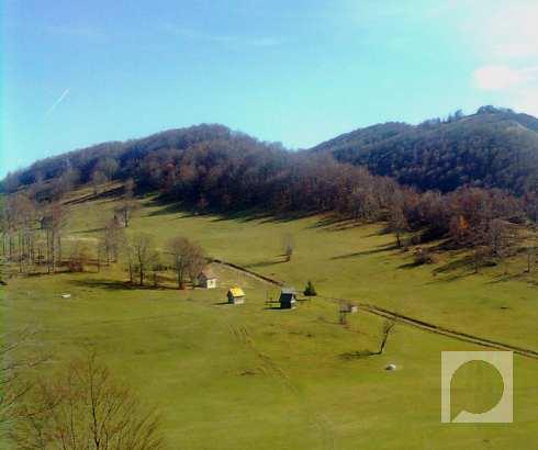 Stefa (Vrnjačka Banja): Vratila se sreća
