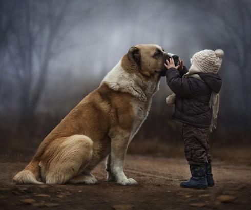 10 razloga zašto vam je potreban pas