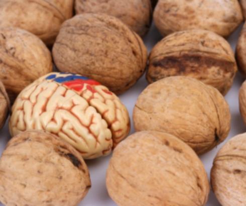 7 hranljivih materija važnih za zdravlje mozga