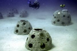 Posmrtni ostaci u veštačkim morskim grebenima