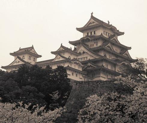 Zamak bele čaplje