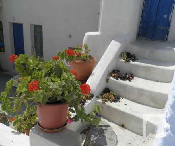 Sunce Grčke i suve grožđice
