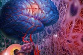 Prion test za retke fatalne bolesti mozga pomaže porodicama da se lakše nose sa bolešću