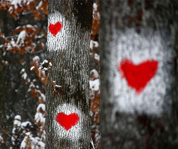 Šta se zbiva u mesecu pred srčani udar