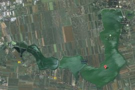 Palićko jezero kod Subotice
