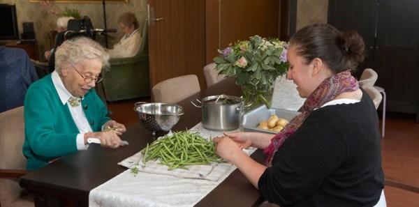Hogevej naselje dementnih osoba svakodnevni poslovi u domacinstvu