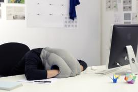Dremka na poslu – Poželjno ali neizvodljivo (galerija fotografija)