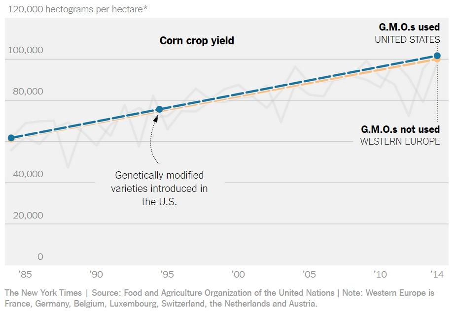 gmo-evropa-amerika-kukuruz-prinos-po-hektaru