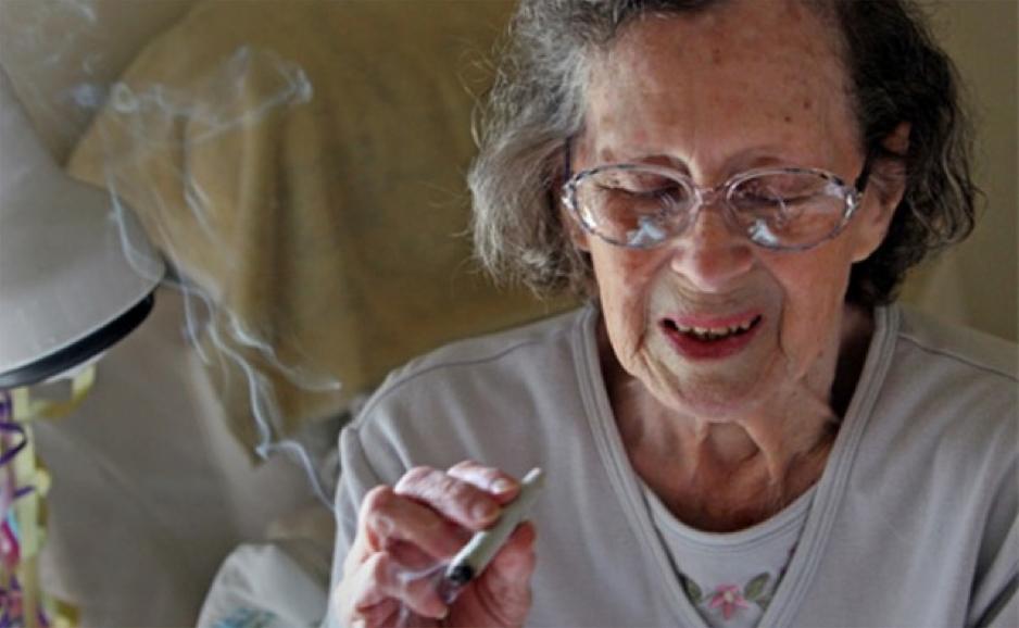 Policijski desant na kuću 81-godišnje starice zbog stabljike marihuane
