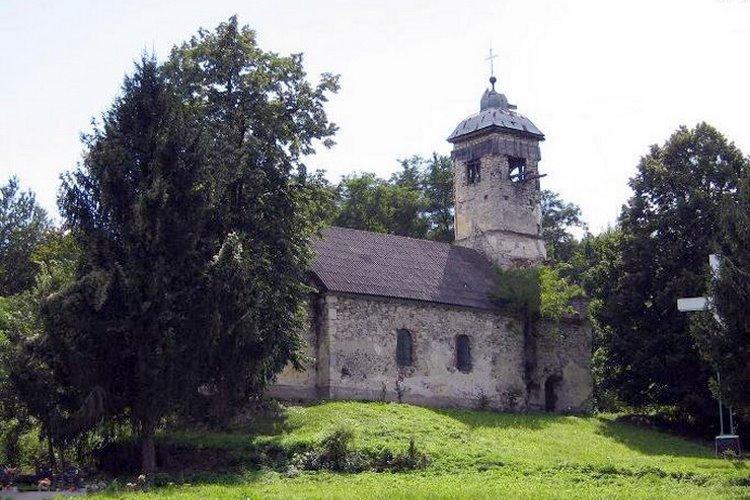 Mirko (Gardinovci): Put dug dvadeset godina