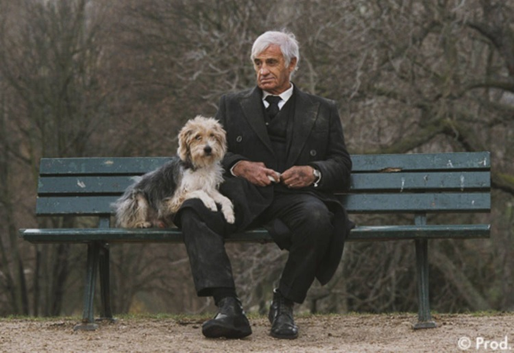 Čovek i njegov pas