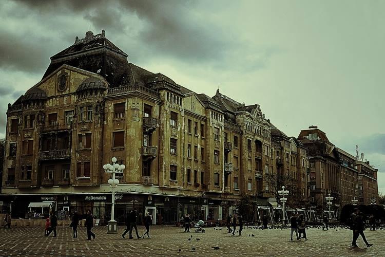 Draginja (Zrenjanin): Putovanje za pamćenje