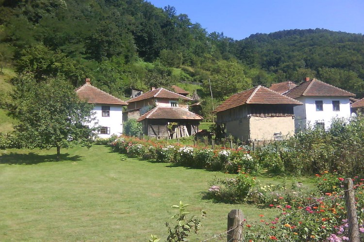 Mirjana (Kragujevac): Ceo Levač moje selo