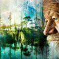 Gvožđe – ključ za usporavanje starenja?
