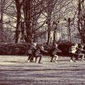 Sposobnost, ne starost, faktor za određivanje aktivnosti